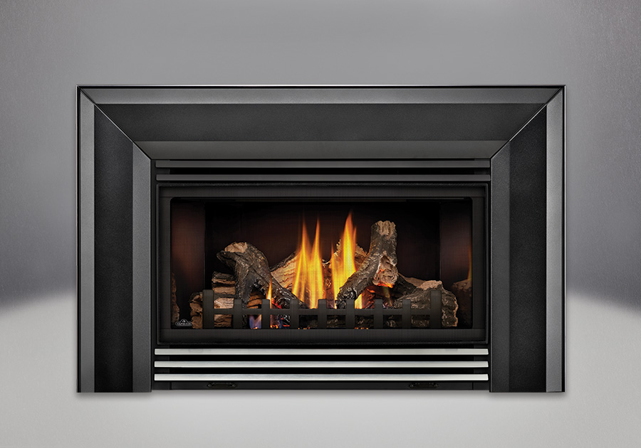 Napoleon Roxbury 30 Gas Fireplace Insert Best Toronto Price