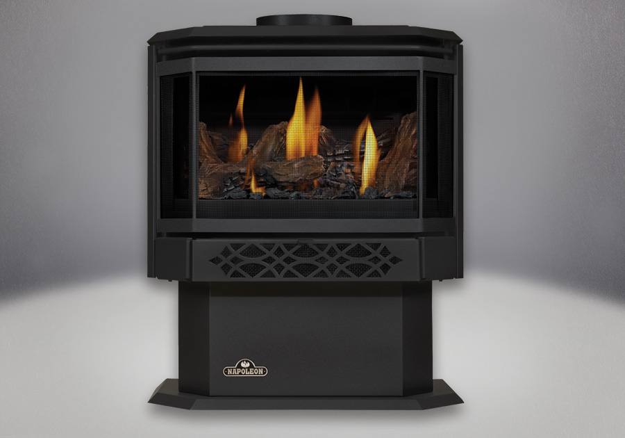 Napoleon Haliburton™ Direct Vent Gas Stove