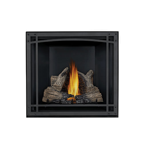 Napoleon STARfire™ 35 Direct Vent Gas Fireplace