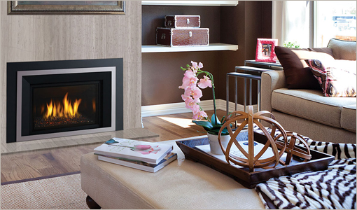Regency Inserts Gas Fireplaces