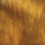 Sierra Copper-