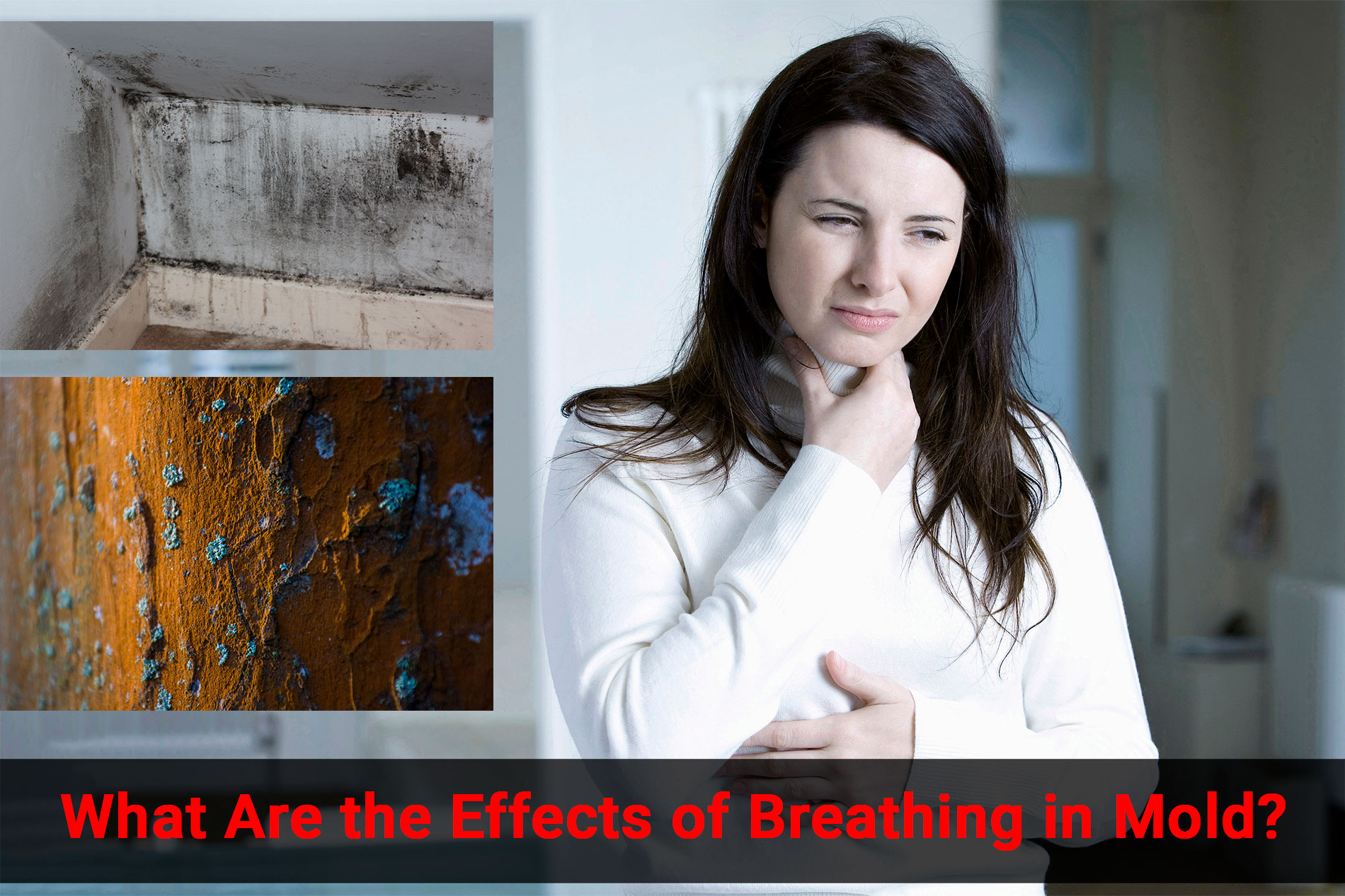 What-Are-the-Effects-of-Breathing-in-Mold