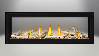 Napoleon Luxuria™ See Thru Series Direct Vent Gas Fireplace