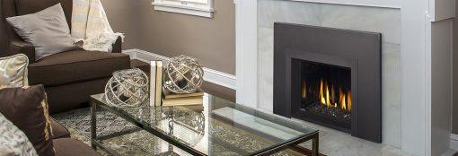 Napoleon Oakville™ Series Gas Fireplace Insert-2