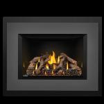 Napoleon Oakville™ Series Gas Fireplace Insert